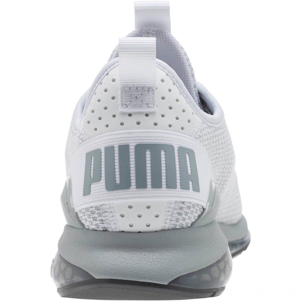 Puma Cell Descend Men's Running Shoes White-Quarry-Iron Gate Outlet Sale